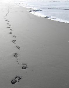 footsteps-1045952_960_720
